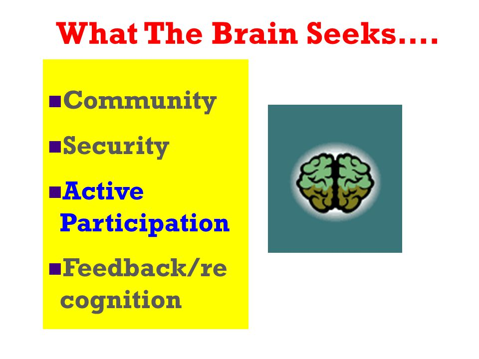 What The Brain Seeks…. Community Security Active Participation