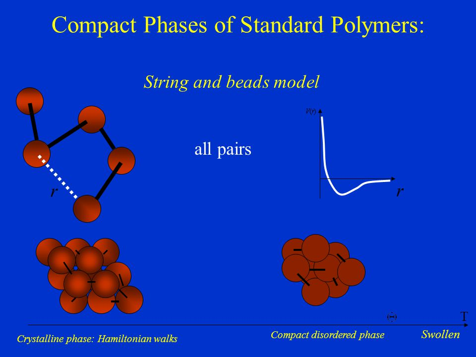 Compact Phases of Standard Polymers: