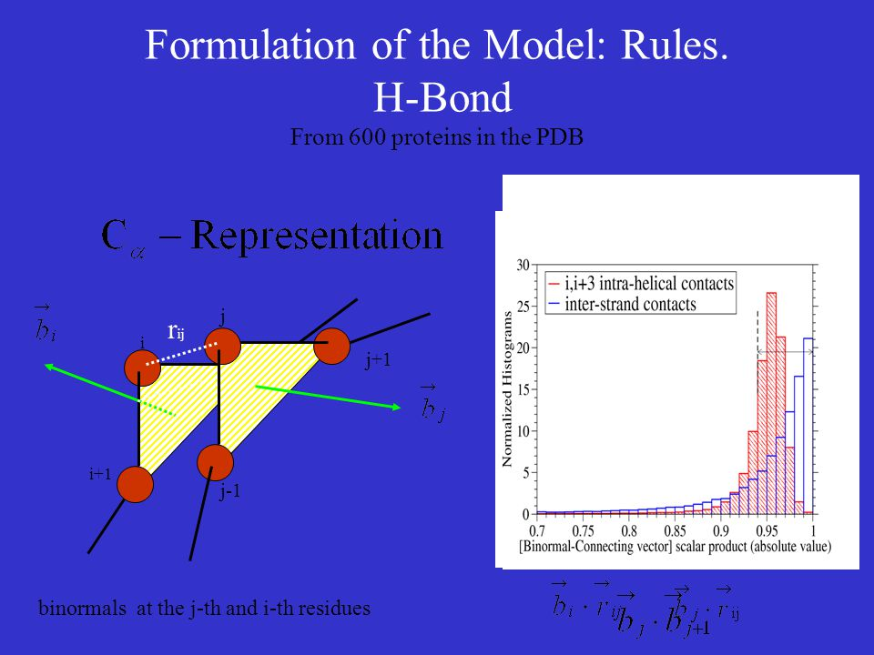 Formulation of the Model: Rules. H-Bond From 600 proteins in the PDB