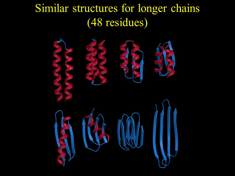 Similar structures for longer chains (48 residues)