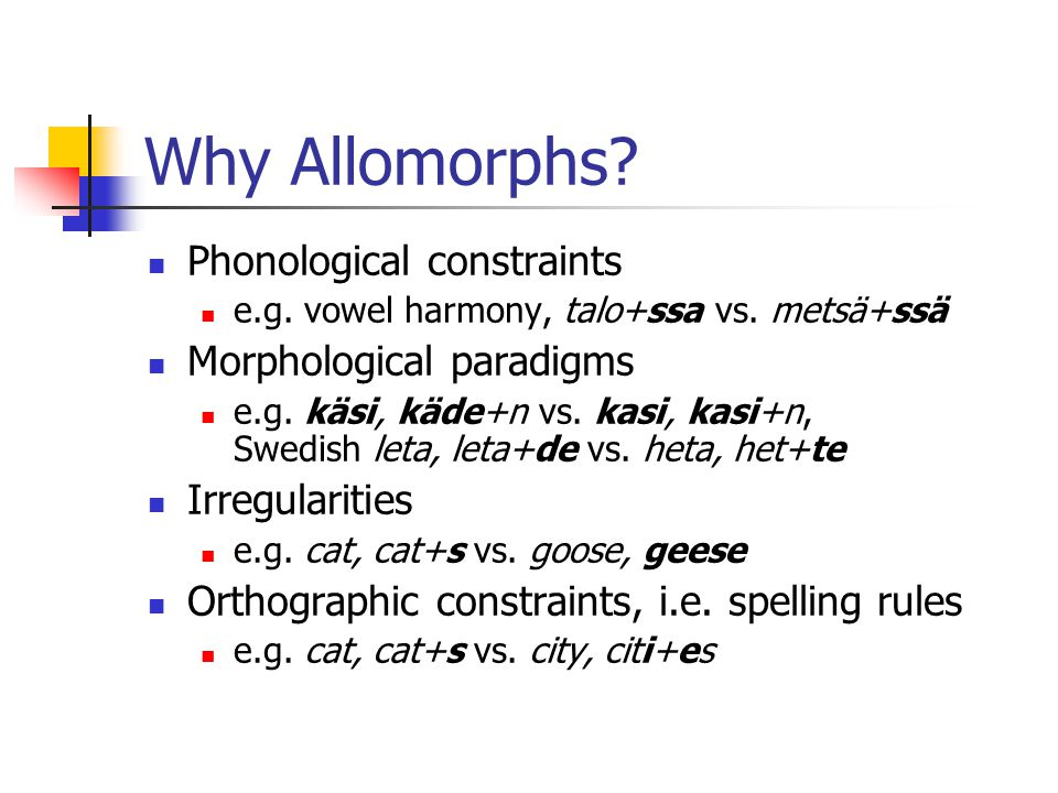 Why Allomorphs Phonological constraints Morphological paradigms