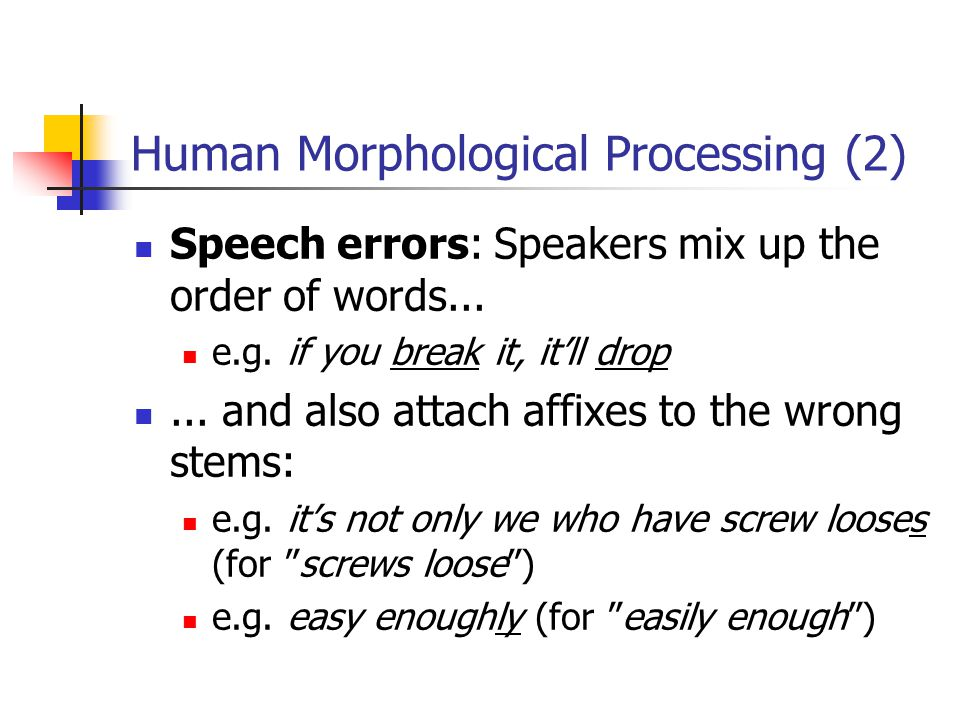 Human Morphological Processing (2)