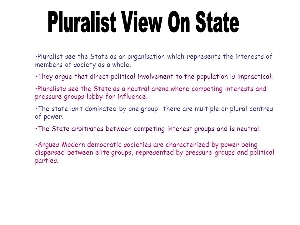 Pluralist View On State