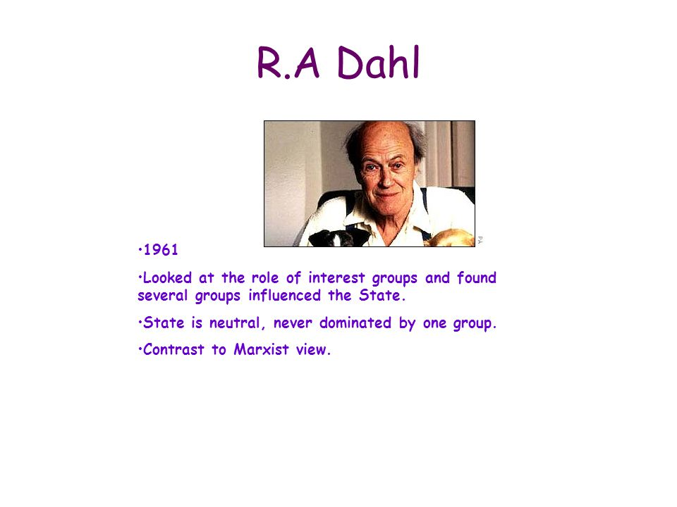 R.A Dahl 1961. Looked at the role of interest groups and found several groups influenced the State.