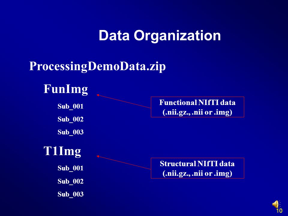 Data Organization ProcessingDemoData.zip FunImg T1Img