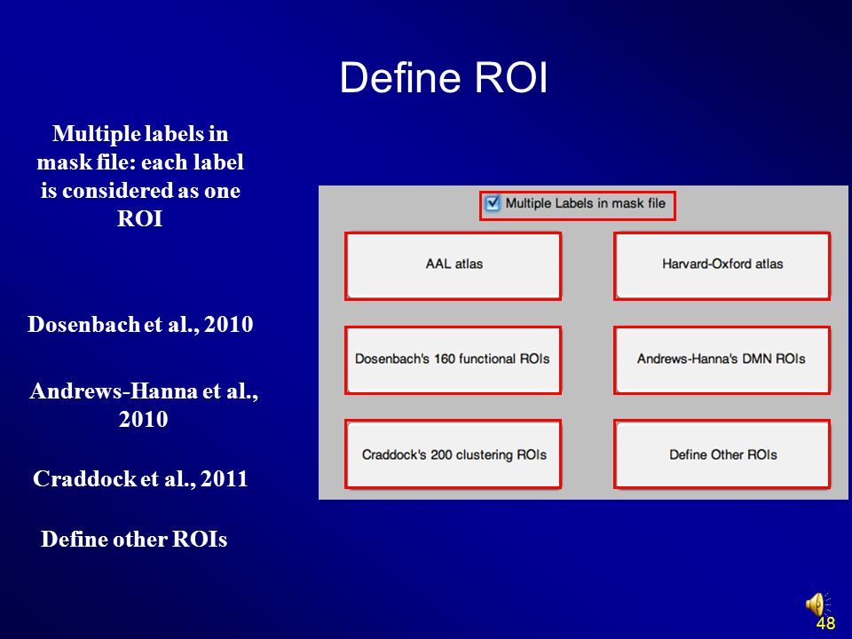 Multiple labels in mask file: each label is considered as one ROI