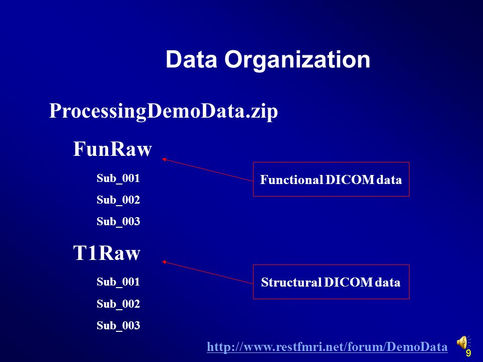 Data Organization ProcessingDemoData.zip FunRaw T1Raw