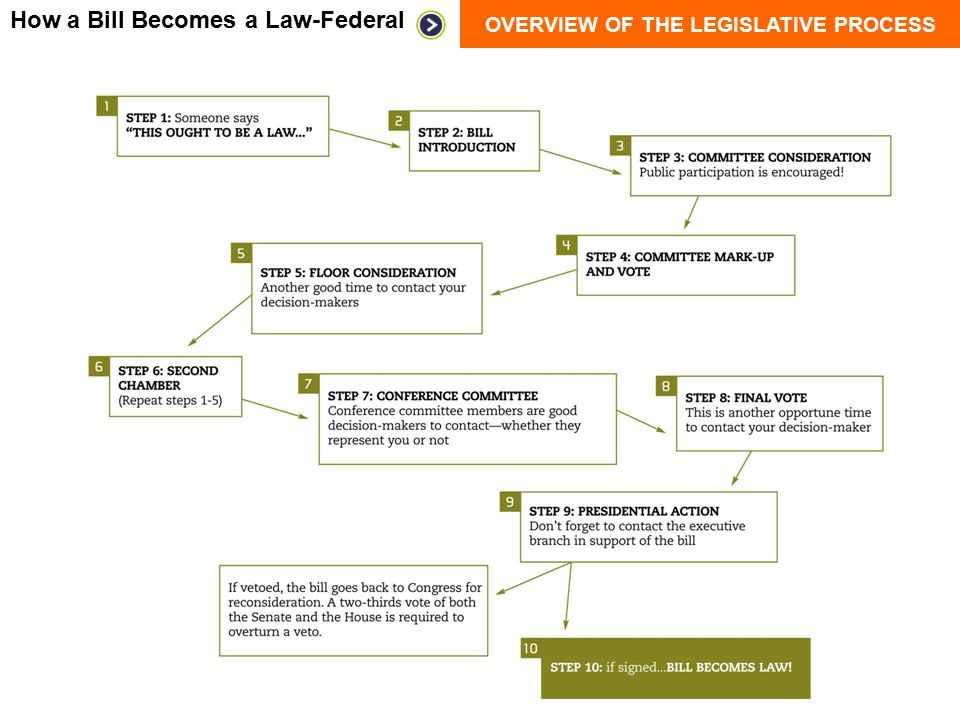 How a Bill Becomes a Law-Federal