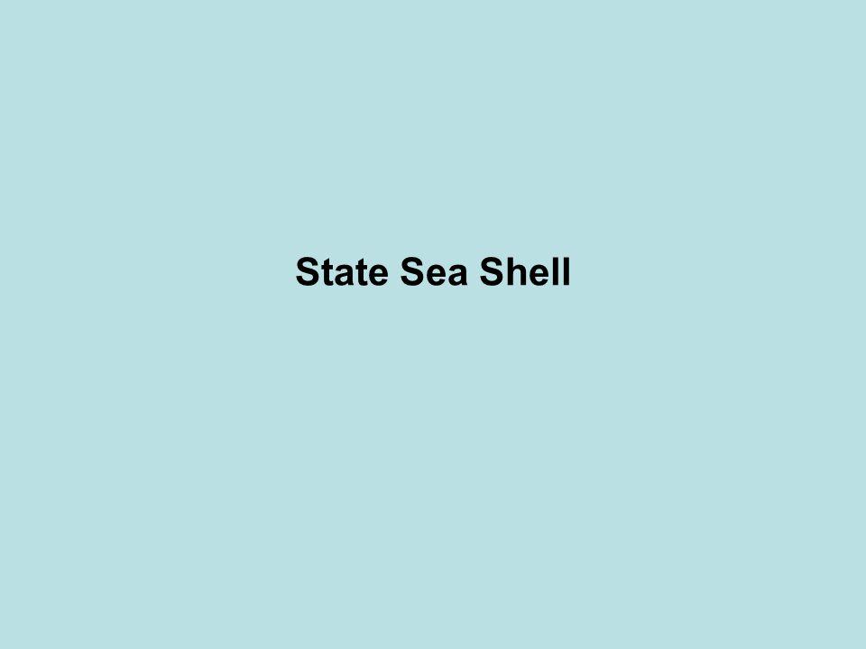 State Sea Shell