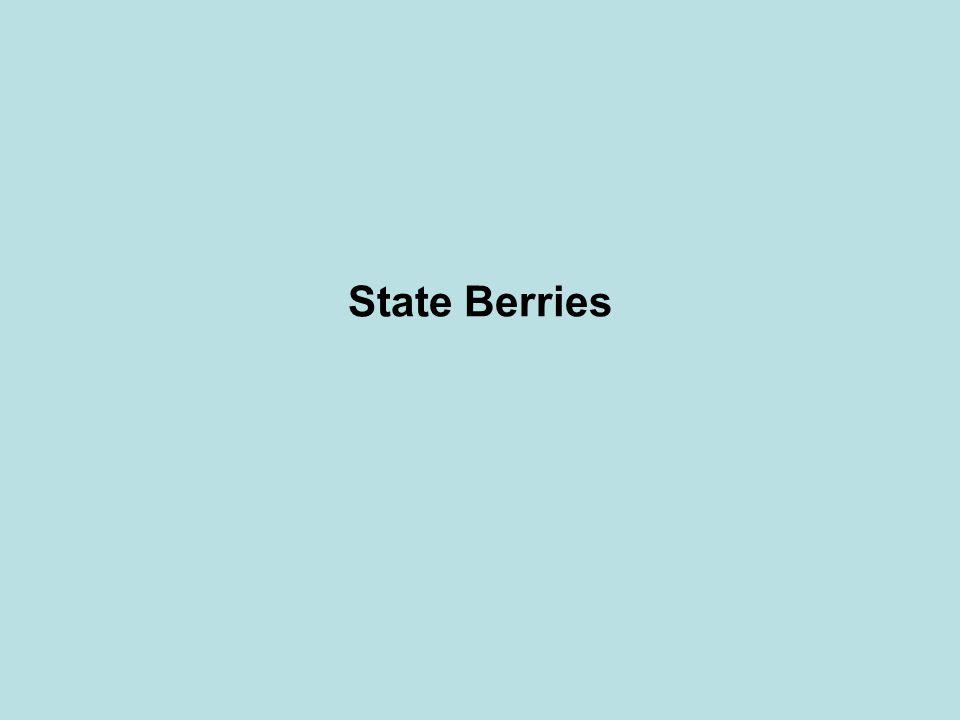 State Berries