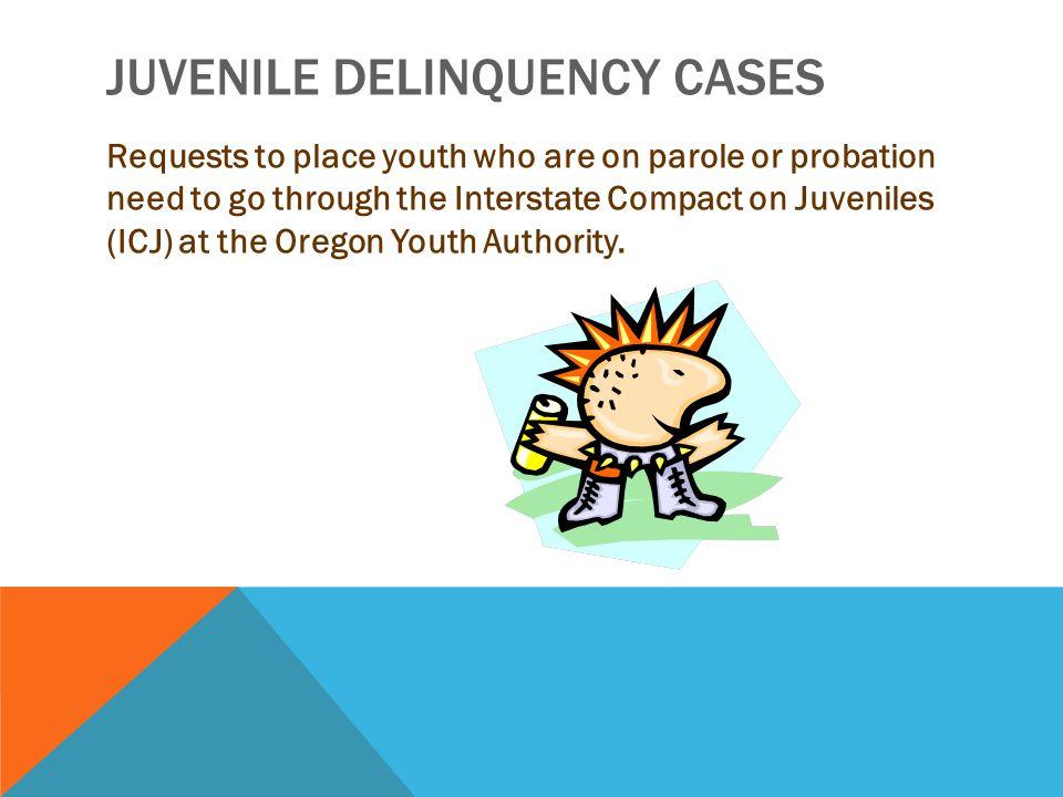 Juvenile Delinquency Cases