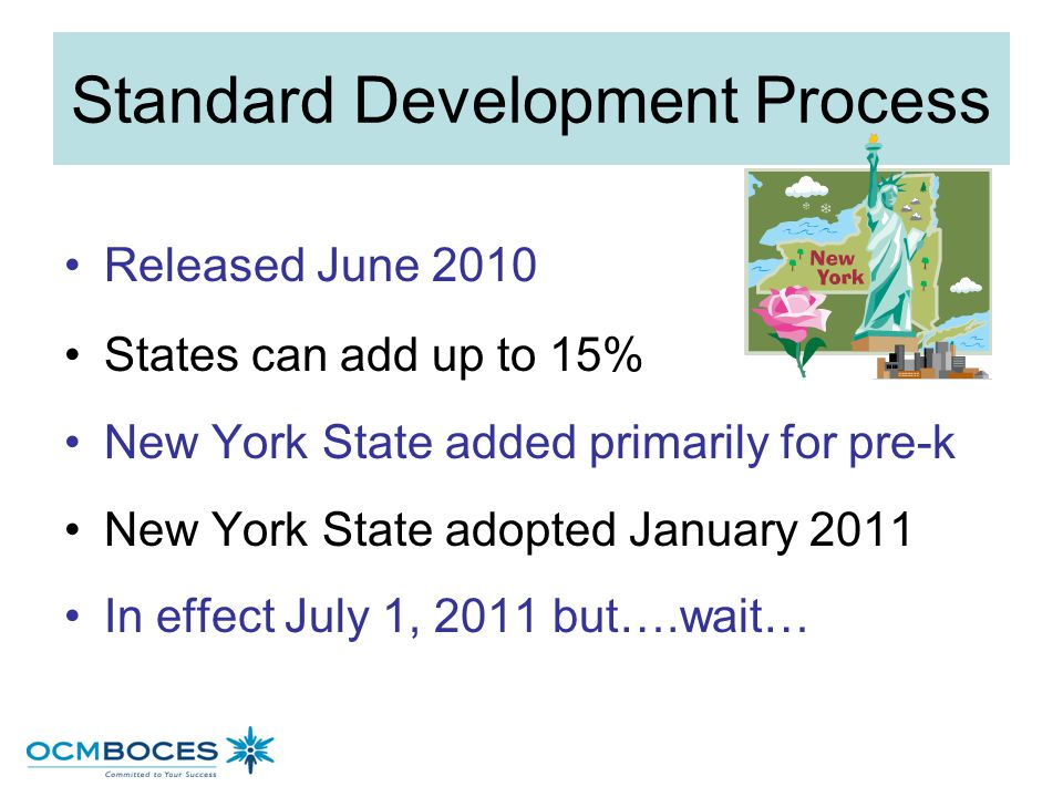Standard Development Process