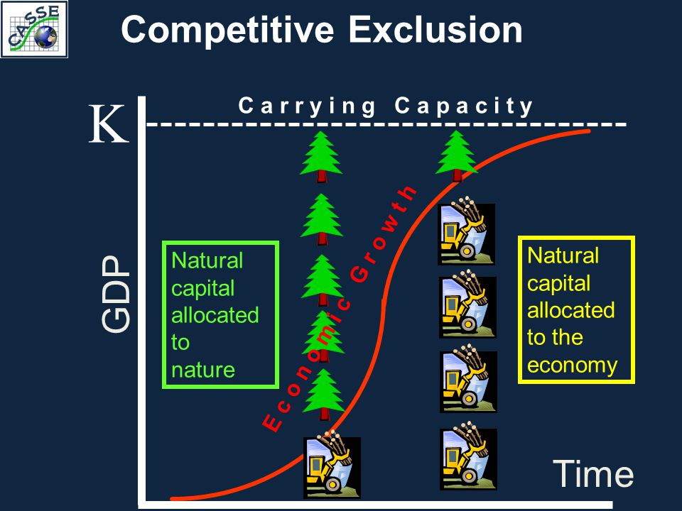 K Competitive Exclusion GDP Time C a r r y i n g C a p a c i t y