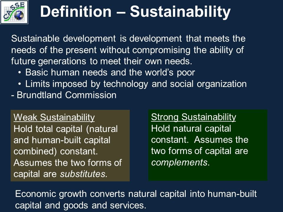 definition of environmental sustainability pdf