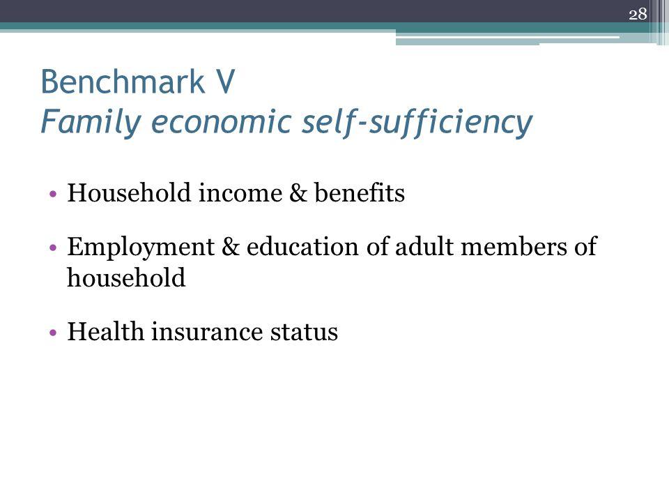 Benchmark V Family economic self-sufficiency