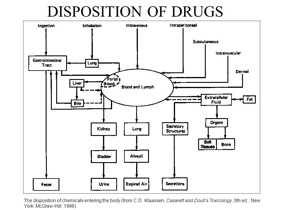DISPOSITION OF DRUGS
