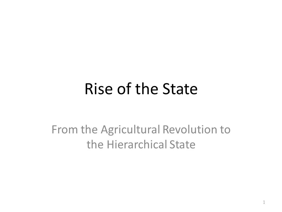 From the Agricultural Revolution to the Hierarchical State