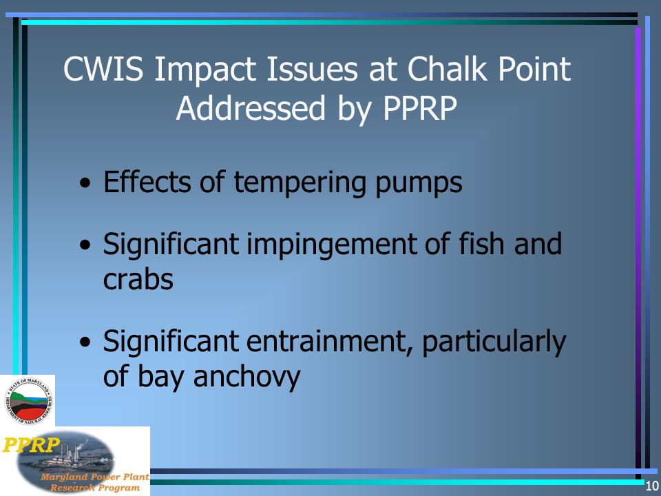 CWIS Impact Issues at Chalk Point Addressed by PPRP