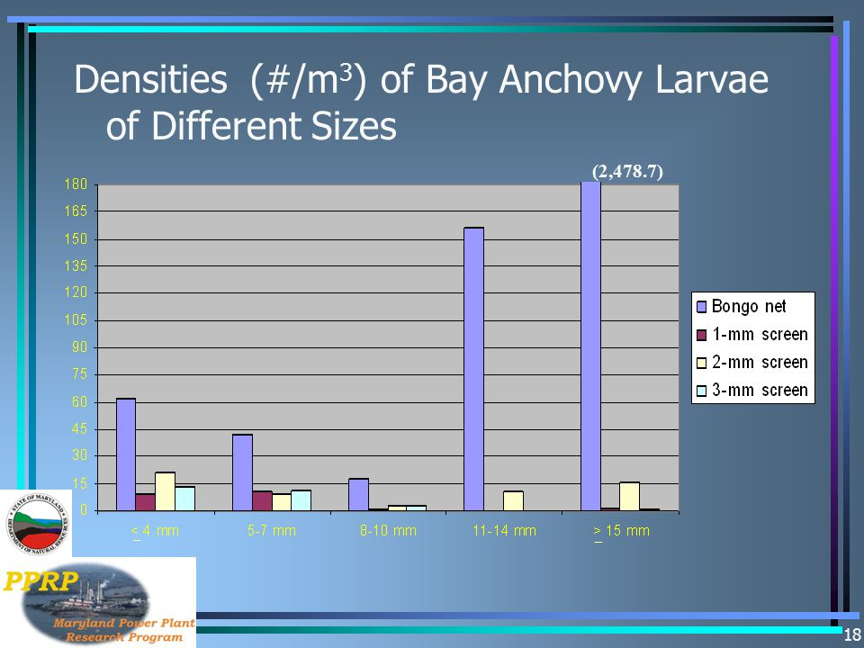 Densities (#/m3) of Bay Anchovy Larvae of Different Sizes