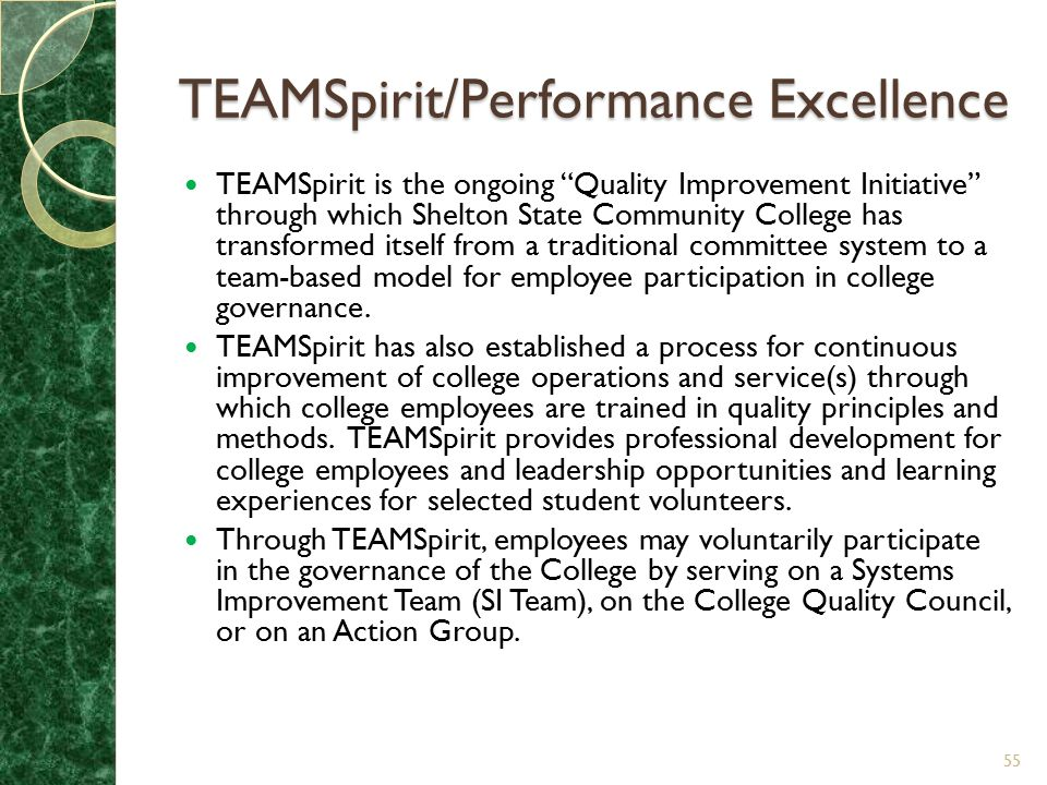 TEAMSpirit/Performance Excellence