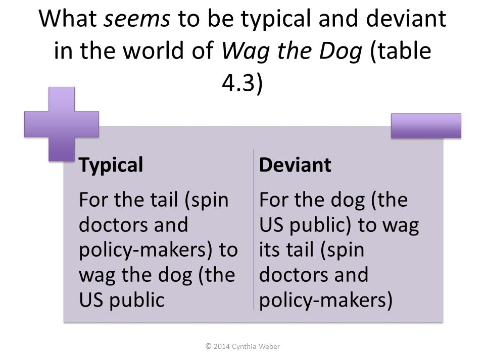 What seems to be typical and deviant in the world of Wag the Dog (table 4.3)