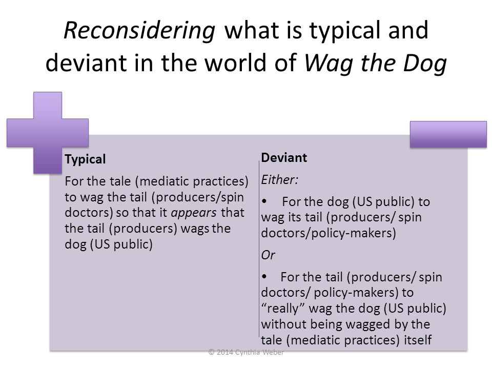 Reconsidering what is typical and deviant in the world of Wag the Dog