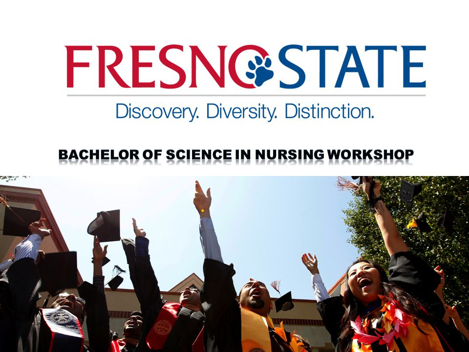 Bachelor of Science in Nursing workshop