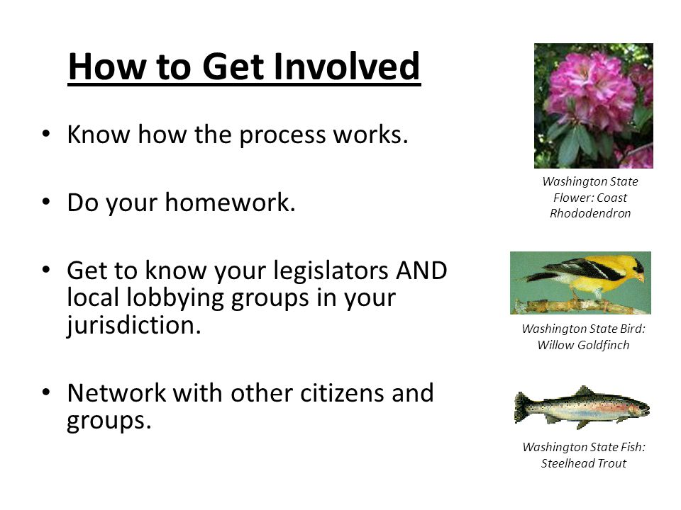 How to Get Involved Know how the process works. Do your homework.