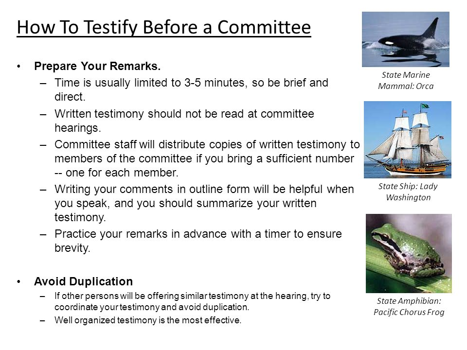 How To Testify Before a Committee