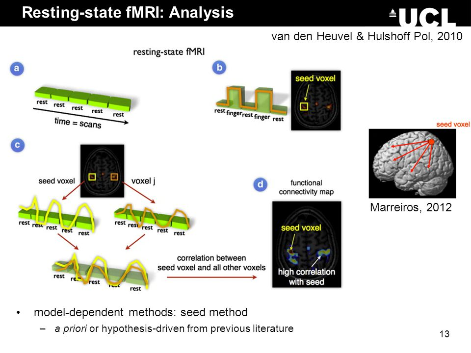 Resting-state fMRI: Analysis