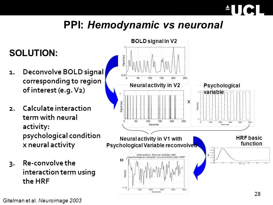 PPI: Hemodynamic vs neuronal