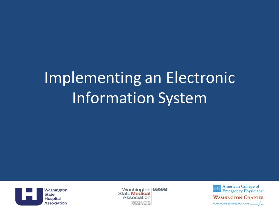 Implementing an Electronic Information System