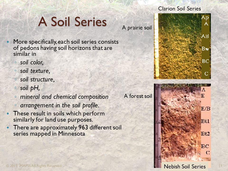 A Soil Series soil color, soil texture, soil structure, soil pH,