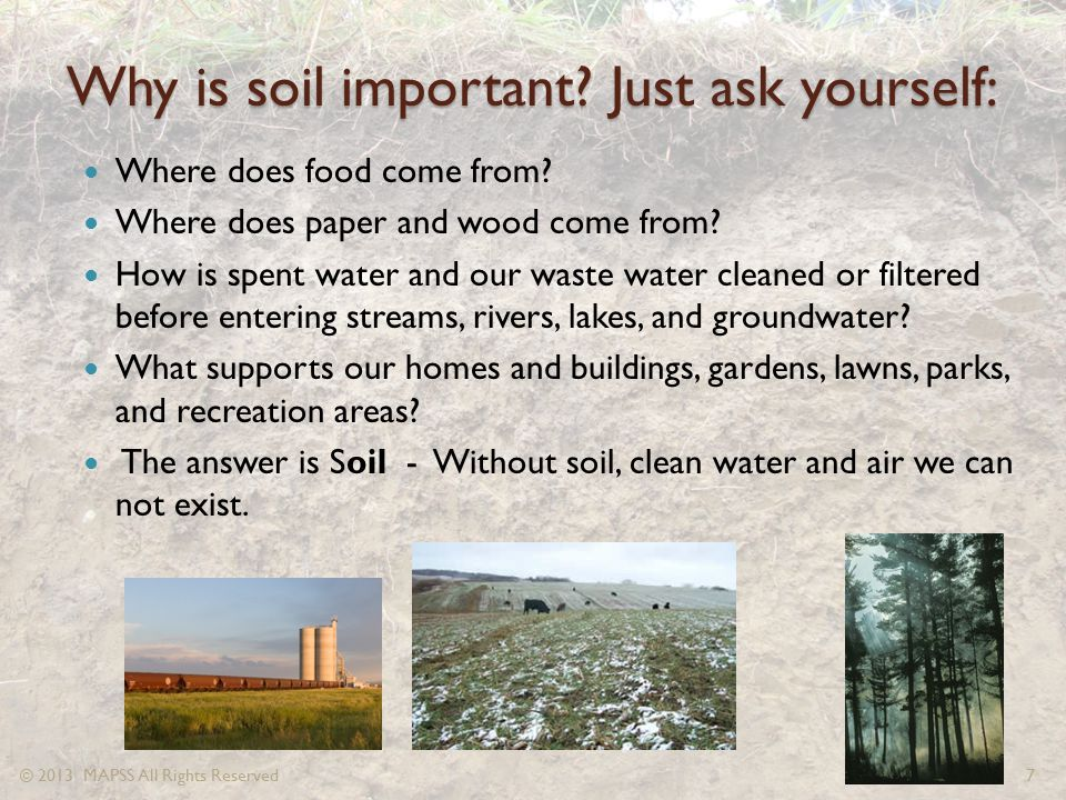 Why is soil important Just ask yourself: