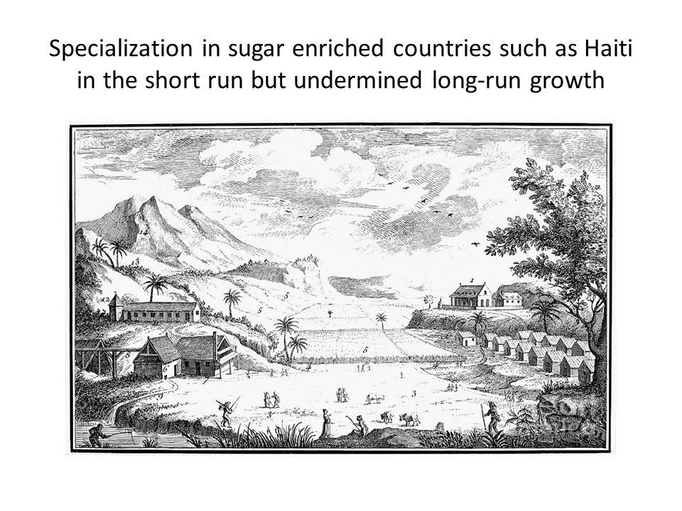 Specialization in sugar enriched countries such as Haiti in the short run but undermined long-run growth