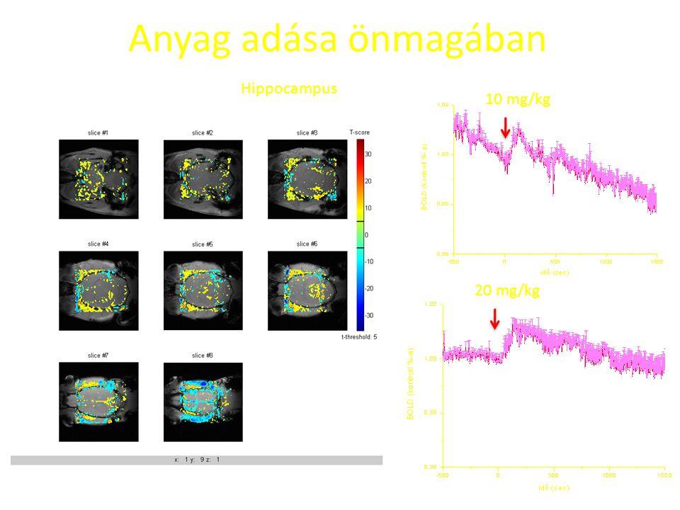 Anyag adása önmagában Hippocampus 10 mg/kg 20 mg/kg