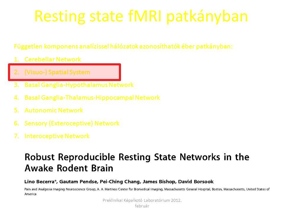 Resting state fMRI patkányban