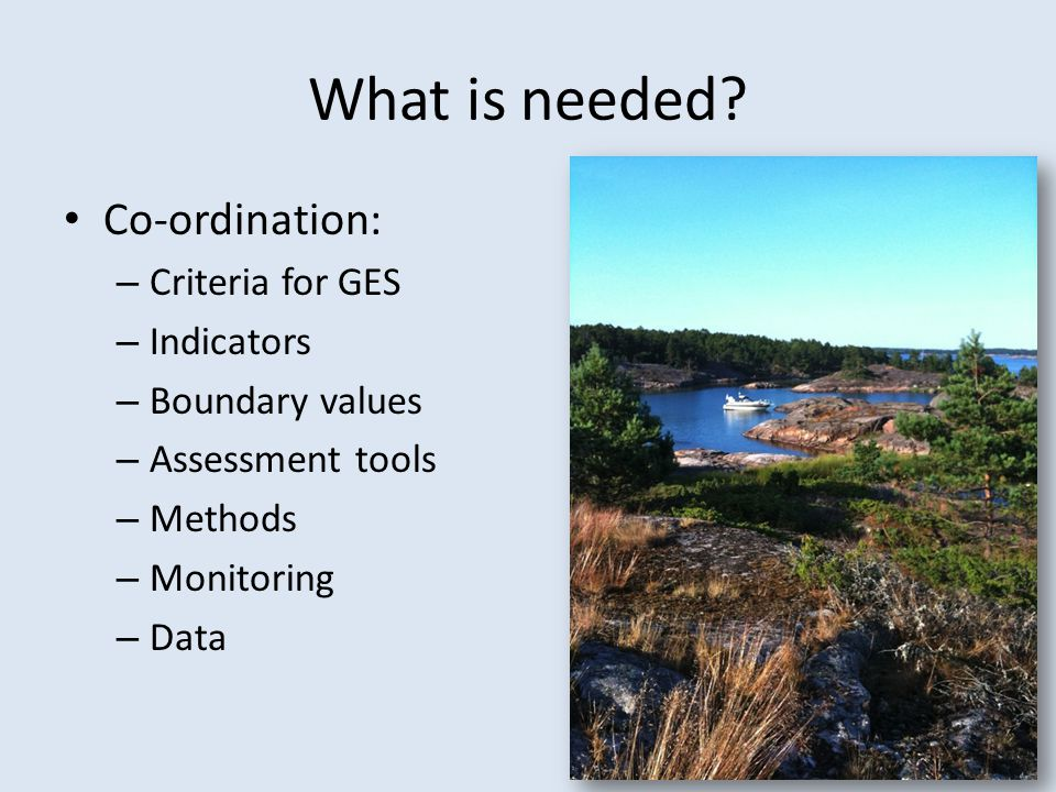 What is needed Co-ordination: Criteria for GES Indicators