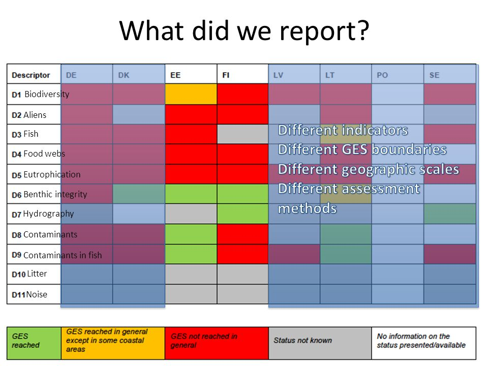 What did we report Different indicators Different GES boundaries