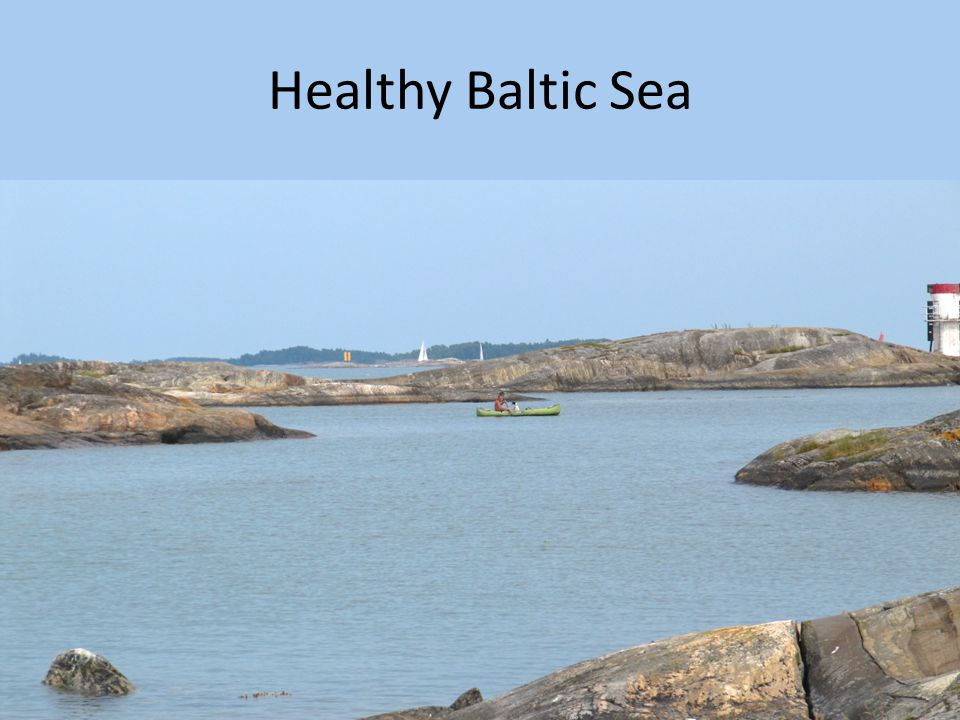 Healthy Baltic Sea It is said that when a man starts to look back he is old.
