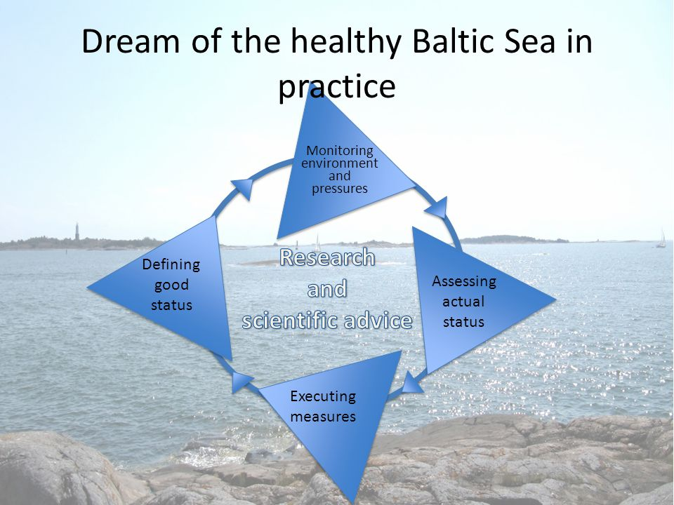Dream of the healthy Baltic Sea in practice