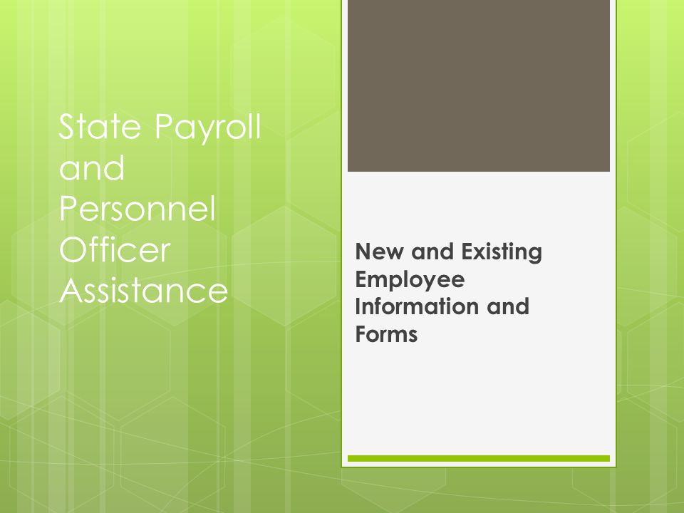 State Payroll and Personnel Officer Assistance