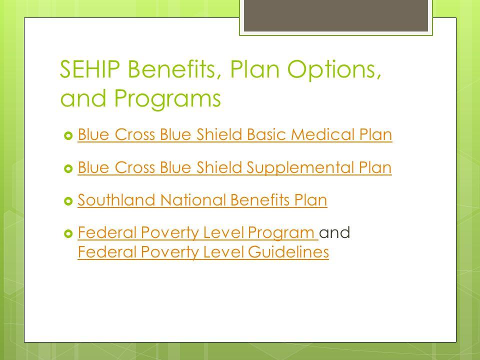 SEHIP Benefits, Plan Options, and Programs
