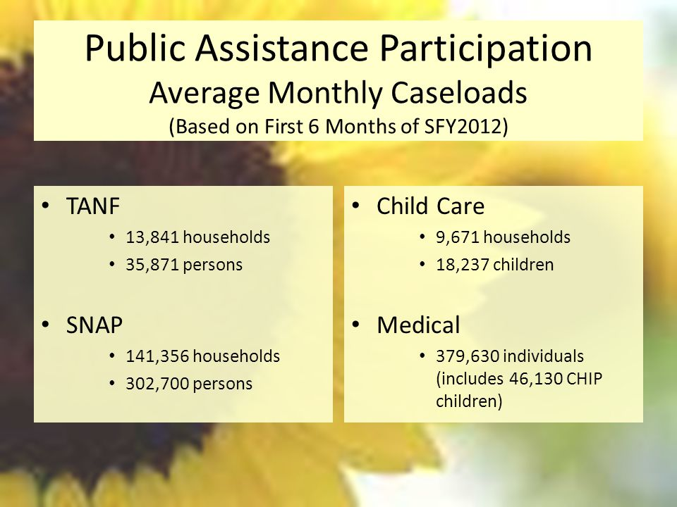 Public Assistance Participation Average Monthly Caseloads (Based on First 6 Months of SFY2012)