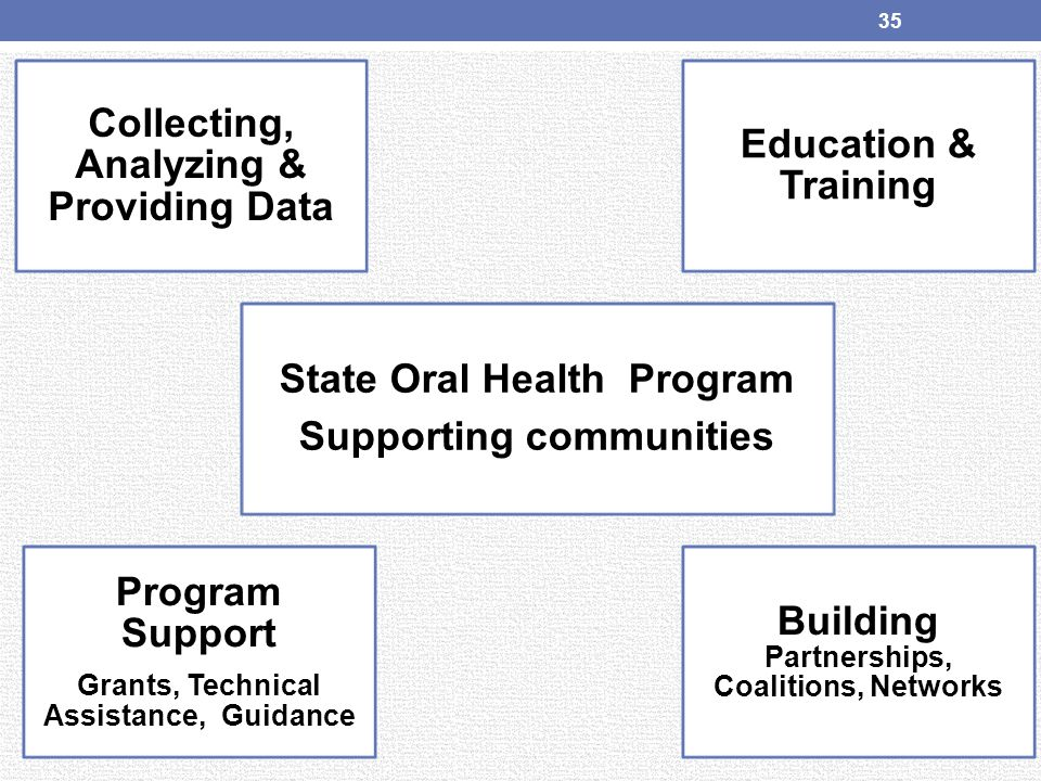 Collecting, Analyzing & Providing Data State Oral Health Program