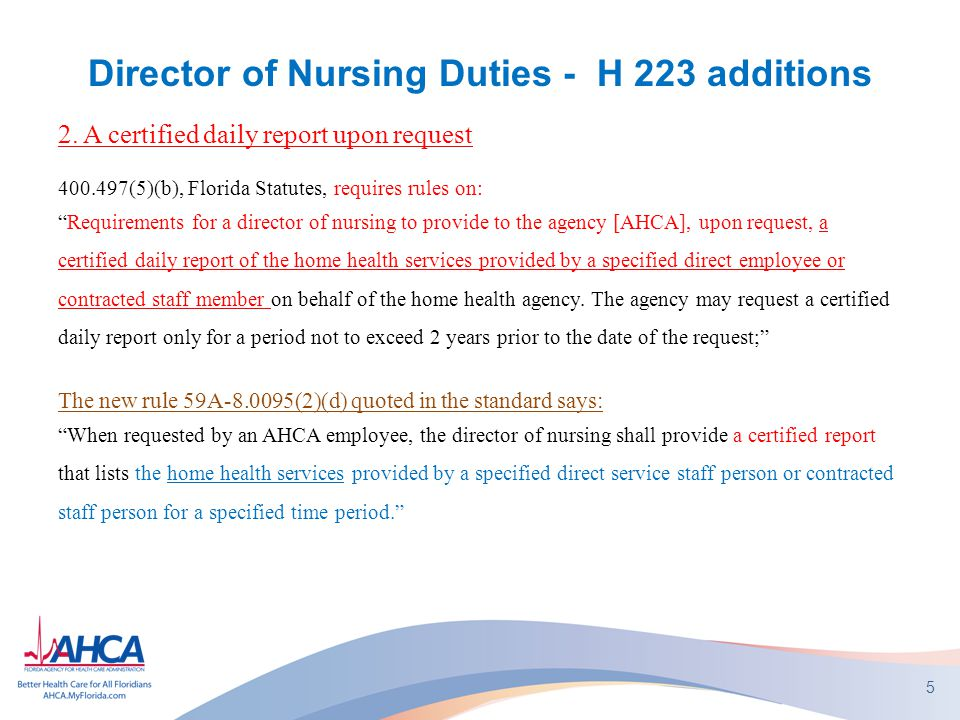 Director of Nursing Duties - H 223 additions