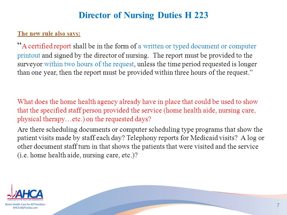 Director of Nursing Duties H 223