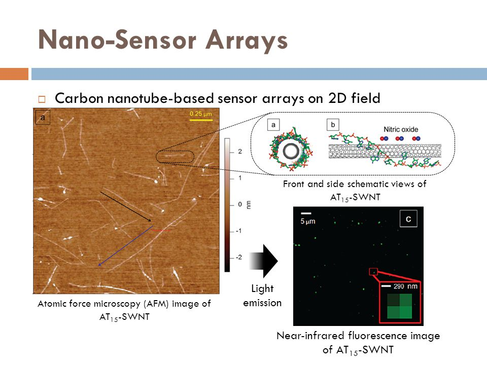 Nano-Sensor Arrays Carbon nanotube-based sensor arrays on 2D field