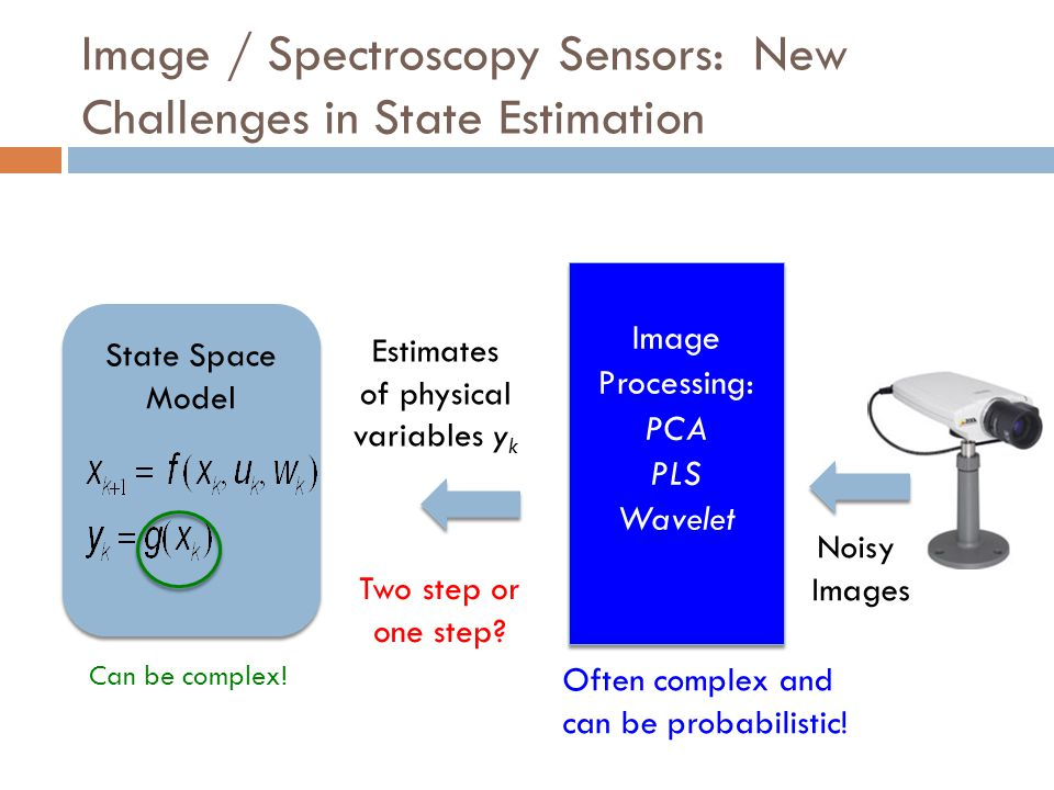 Image / Spectroscopy Sensors: New Challenges in State Estimation