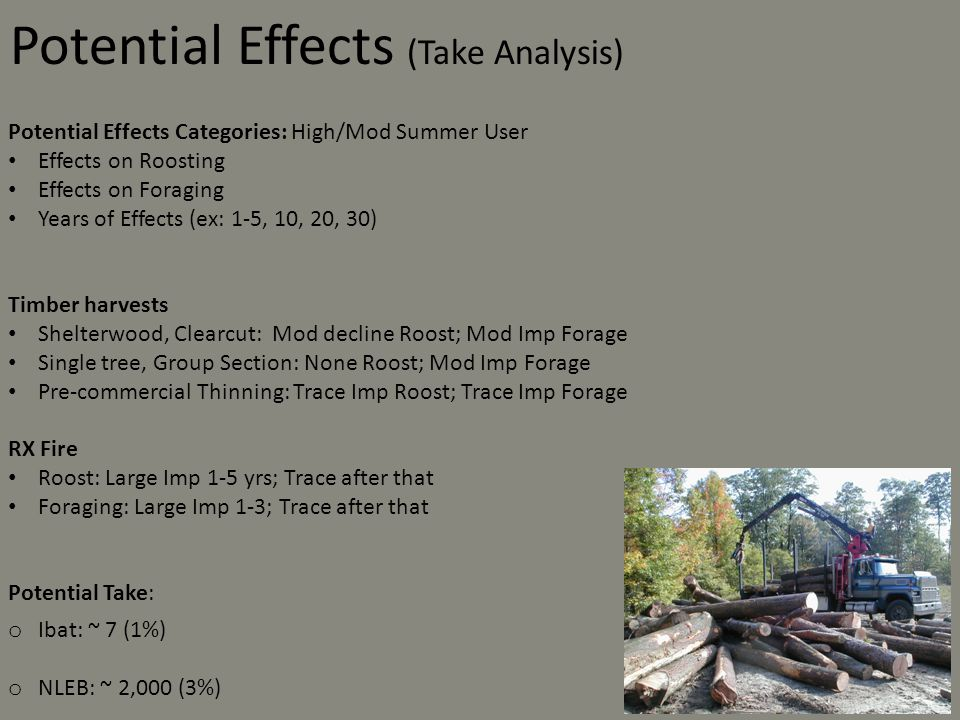 Potential Effects (Take Analysis)